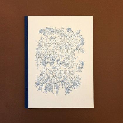 'frothing foaming & teeming' . asbjørn skou . art book