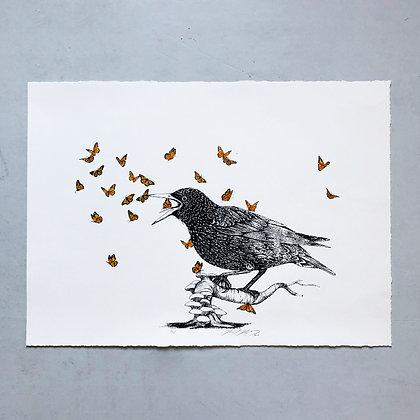 """BIRD"" . NOAH NORRID . 65X47 . ORIGINALPRINT"