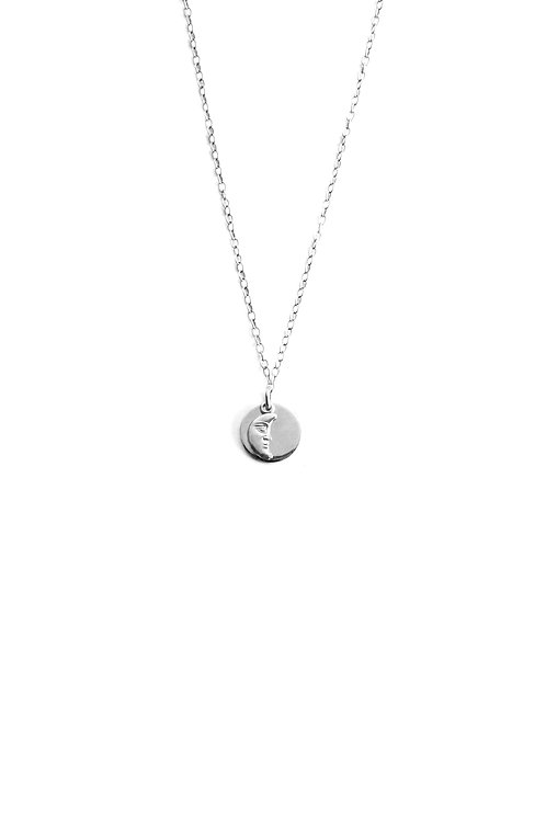 Colgante Amuleto Luna Plata