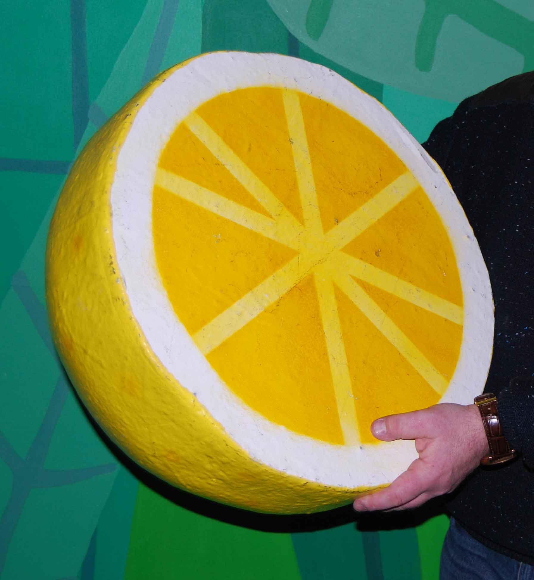 ben-&-holly-lemon