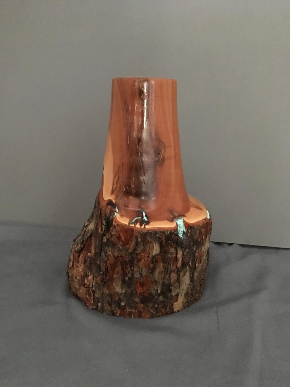 Mountain Mahogany Twig Pot