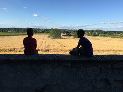 Chateau La Perriere - watching the harve