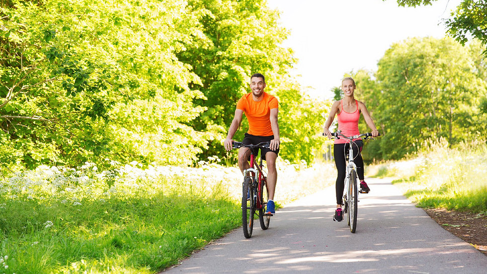 Adult Cycle & Wine Tasting Tour with picnic
