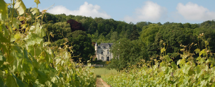 Luxury Self Catering Chateau in the Loire Valley, perfect for wine tours