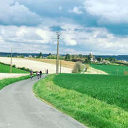 Chateau La Perriere Wine and Cycle Tours