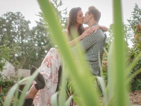 Vineyard Proposal