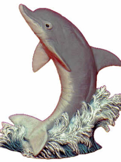 Dolphin (Medium)