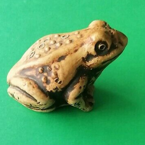 Large Garden Toad