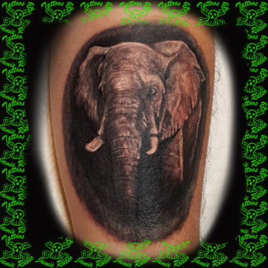 elephant Tattoo by Jamie Russo Barrie