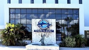 Mote Marine Aquarium