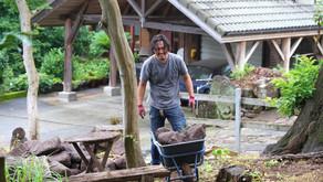 庭いじり家いじり : 2トン分の石が届いたよって話