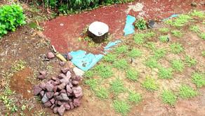 庭いじり家いじり : 1トン分の石を使い土留に挑戦してみるの巻