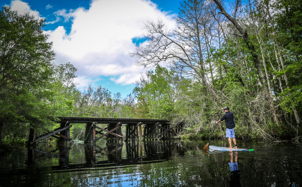 learn how to paddle board on the calm waters