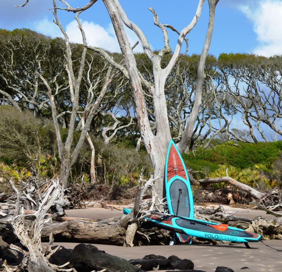 paddle boarding tour Amelia Island
