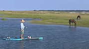 SUP lessons Fernandina Beach
