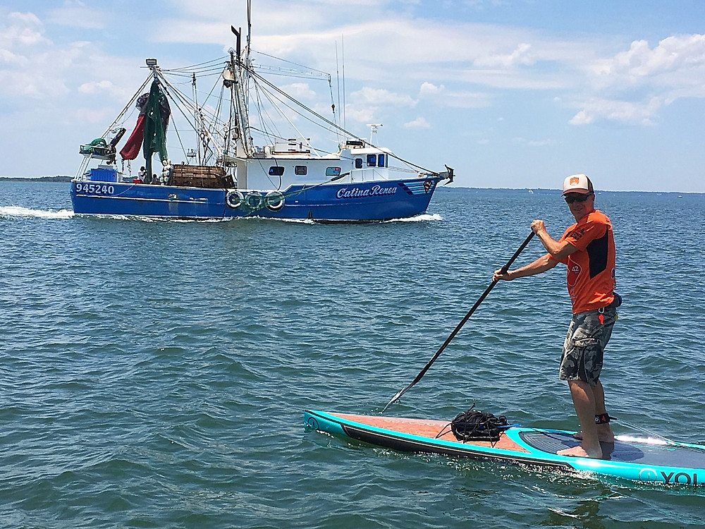paddle boarding rentals and tours