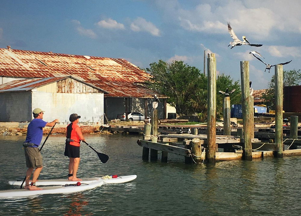 urban paddle boarding on calm water