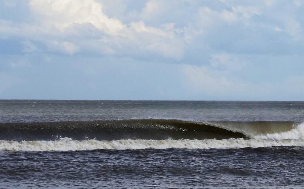 paddle surfing Amelia Island