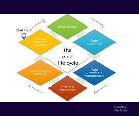 Data Life Cycle.jpg