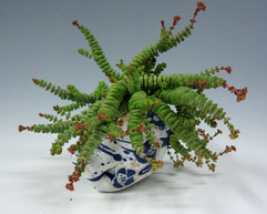 bleu-vegetal gres-jardinieres graine4- a