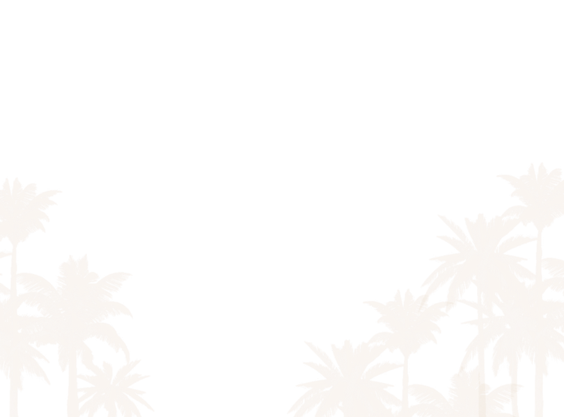 palm trees.png