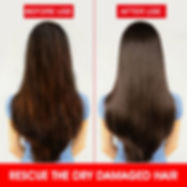 argan oil benefits for Damaged and Dull Hair,pure argan oil in singapore