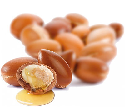 argan nut , argan oil of morocco in singapore
