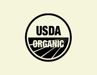 organic skin care in Singapore