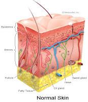 eczema remedies, Argan oil singapore