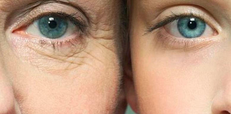 Argan oil improves skin appearance