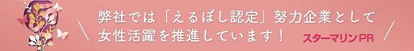 el_bnr_2003.jpg
