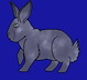 Blue Silber Tipped.png