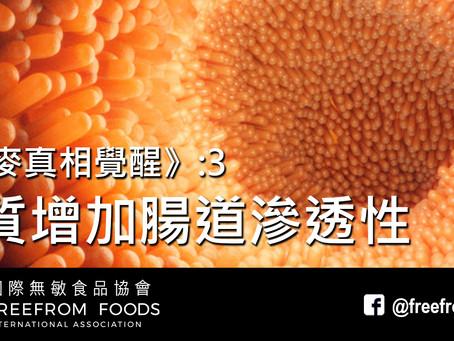 《小麥真相覺醒》3: 麩質增加腸道滲透性