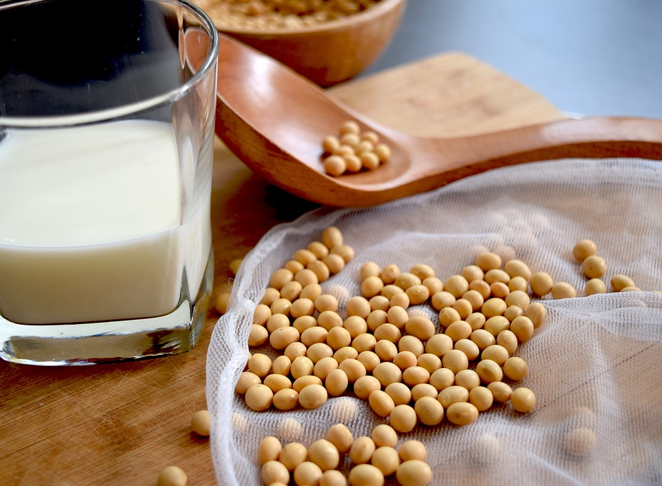 7大令身體不適的嫌疑犯+致敏源+allergy-free+freefrom+食物敏感+食物不耐受+soy+ 黃豆