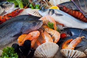 7大令身體不適的嫌疑犯+致敏源+allergy-free+freefrom+食物敏感+食物不耐受+seafood+海鮮