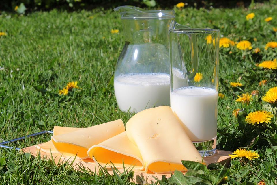 7大令身體不適的嫌疑犯+致敏源+allergy-free+freefrom+食物敏感+食物不耐受+dairy+milk+牛奶