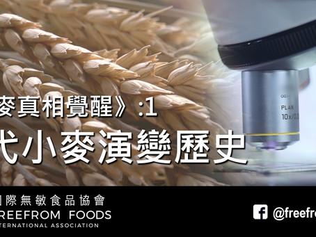 《小麥真相覺醒》1: 現代小麥演變歷史