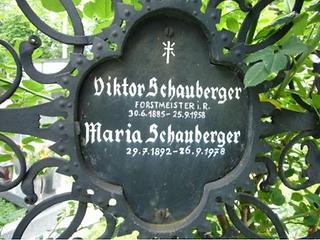 Viktor Schauberger 21