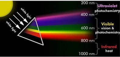 Light spectrum - babbitt