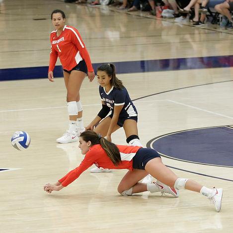Darral Freund Photography | Professional Volleyball Photographer | MSU Denver Vs. Concordia University