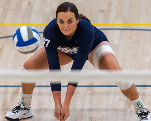MSU Denver Volleyball