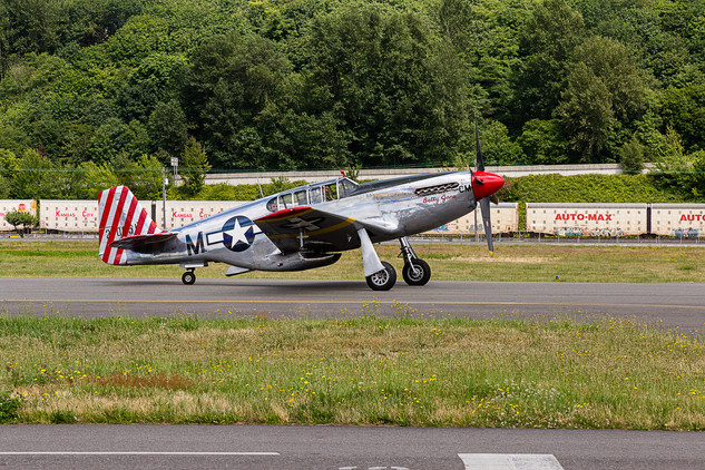 Collings Foundation TF-51D Mustang