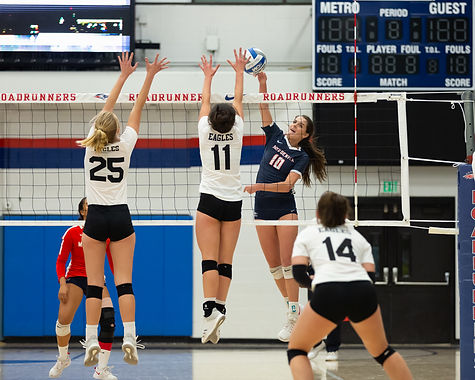 Photos of MSU Denver Volleyball 2018 Season