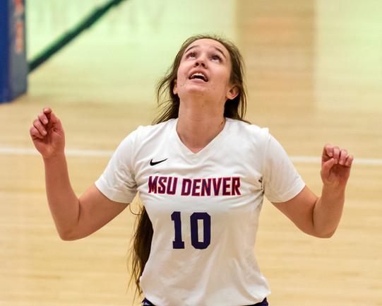 MSU Denver Volleyball
