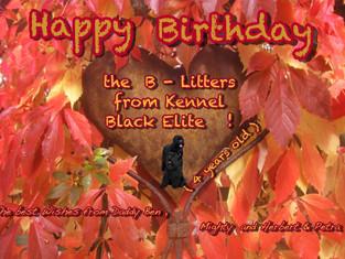 Alles Liebe und Gute , viel Gesundheit den B - Wurf von Black Elite !!