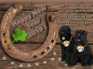 Ein frohes , gesegnetes und friedvolles Jahr 2019 !