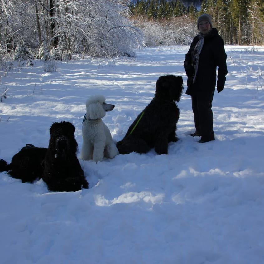 Schnee ist so toll ....!!!