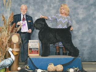 Super News !!! Big Congratulations to Guardian Bears Kennel !!