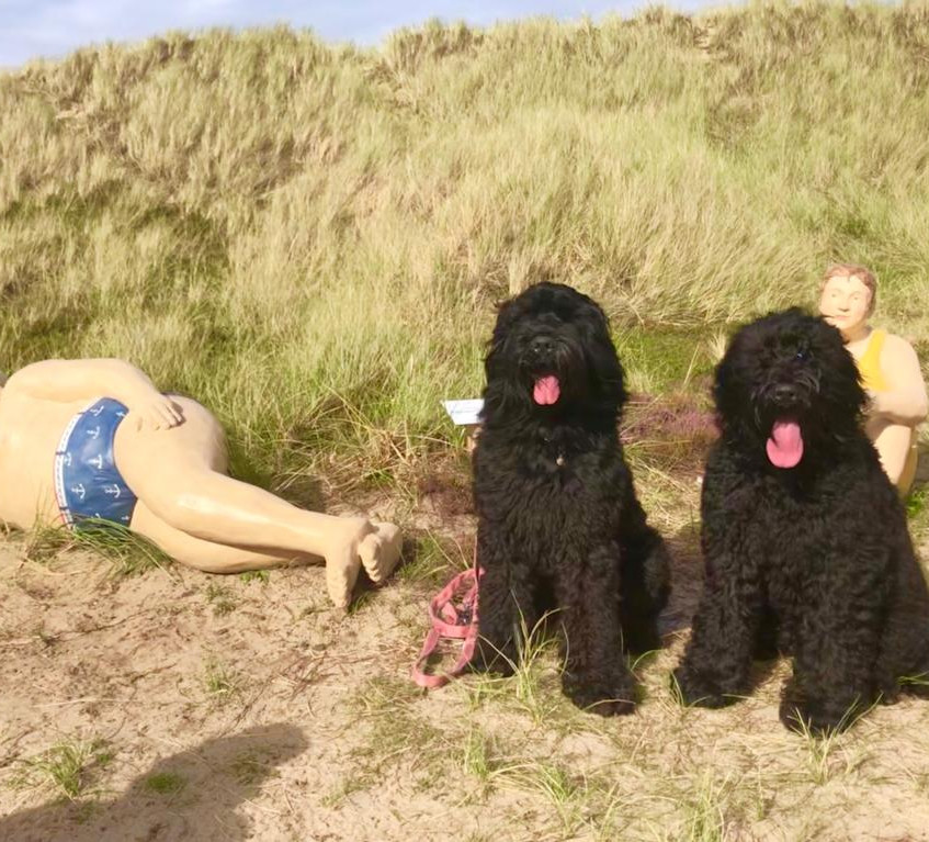Skulpturen im Sand ......!!