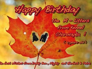 Alles Liebe und Gute , viel Gesundheit wünschen wir Euch !!